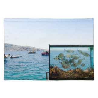 Beautiful Santorini sea view Placemat
