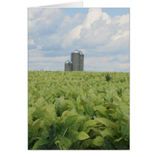Beautiful Scenic View Overlooking a Farm Card