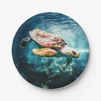 Beautiful Sea Turtle Ocean Underwater Image 7 Inch Paper Plate