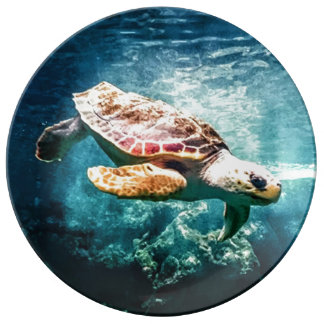 Beautiful Sea Turtle Ocean Underwater Image Porcelain Plates