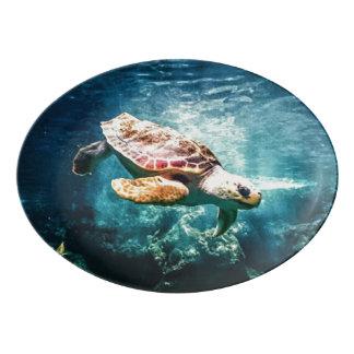 Beautiful Sea Turtle Ocean Underwater Image Porcelain Serving Platter