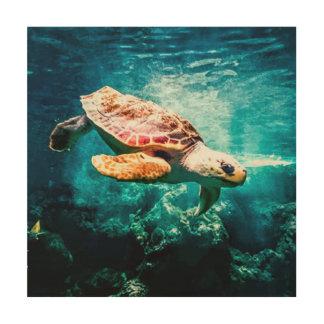 Beautiful Sea Turtle Ocean Underwater Image Wood Print