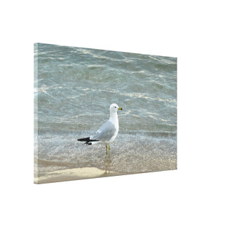 Beautiful Seagull Wall Art On Wrapped Canvas