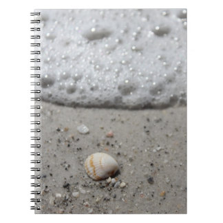 Beautiful seashell on the beach notebook