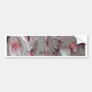 Beautiful Seashells Bumper Sticker