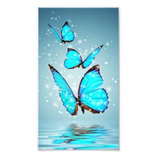beautiful shiny blue butterfly art photo