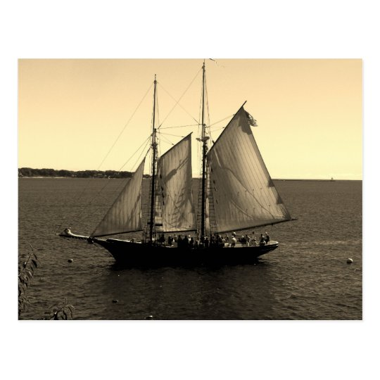 Beautiful ship on the Ocean Postcard
