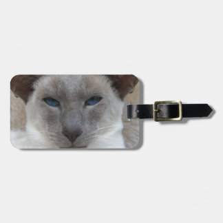 Beautiful Siamese Cat Luggage Tag