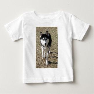 Beautiful Siberian Husky! Baby T-Shirt
