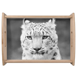 Beautiful Snow Leopard Black and White Portrait Food Trays
