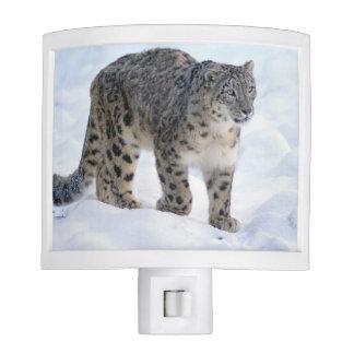 Beautiful snow leopard night lite