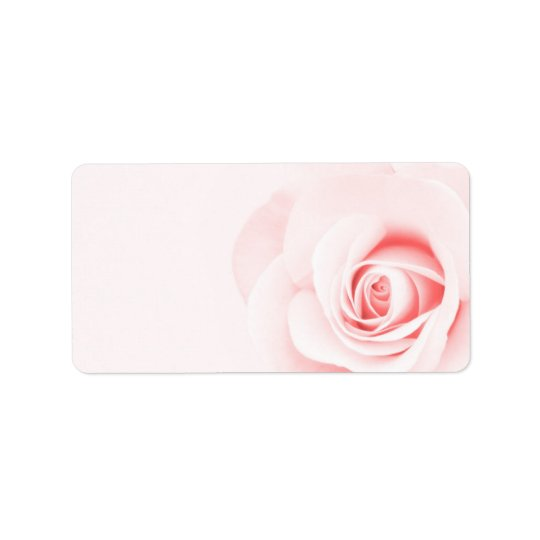 Beautiful soft pale pink rose flower floral label
