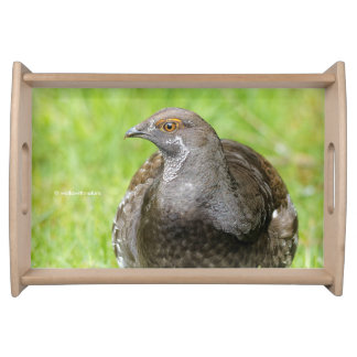 Beautiful Sooty Grouse in the Grass Serving Tray