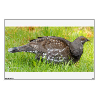 Beautiful Sooty Grouse in the Grass Wall Decal