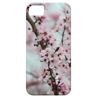 Beautiful Spring Cherry Blossom iPhone 5 Covers