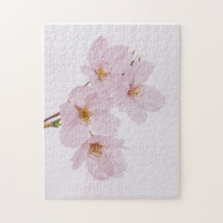 Beautiful spring cherry blossoms in Tokyo Jigsaw Puzzle
