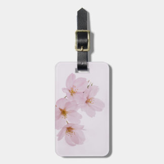 Beautiful spring cherry blossoms in Tokyo Luggage Tag