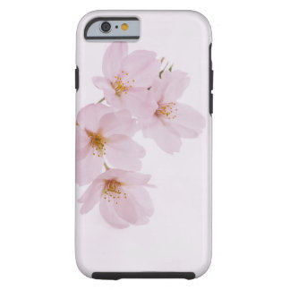 Beautiful spring cherry blossoms in Tokyo Tough iPhone 6 Case
