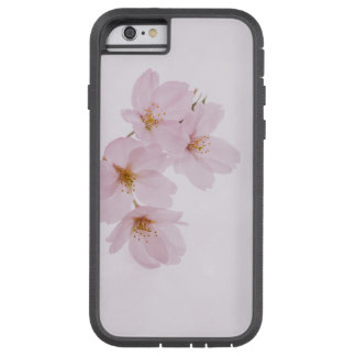 Beautiful spring cherry blossoms in Tokyo Tough Xtreme iPhone 6 Case