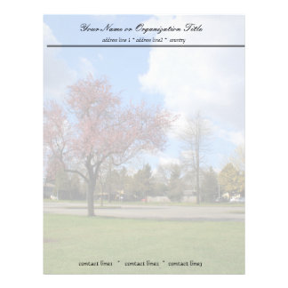 Beautiful spring park landscape photography letterhead template