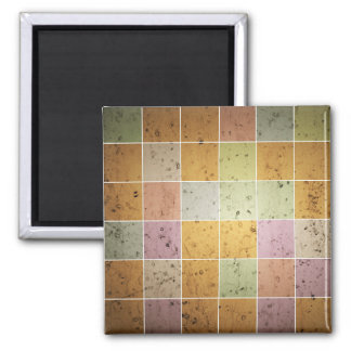 Beautiful Square Magnet