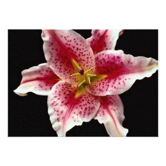 Beautiful Stargazer lily Invite