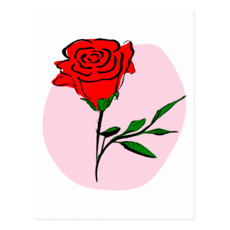 Beautiful Stylized Red Rose on Pink Background Postcard
