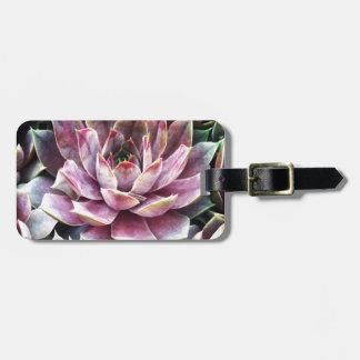 Beautiful Succulant Plant Close-up Luggage Tag