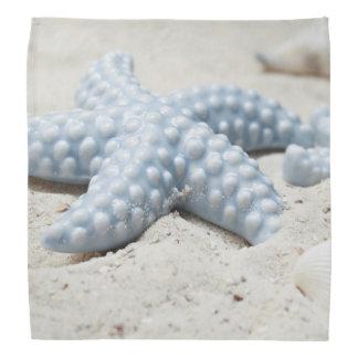 Beautiful summer beach sea star shell and sand bandana