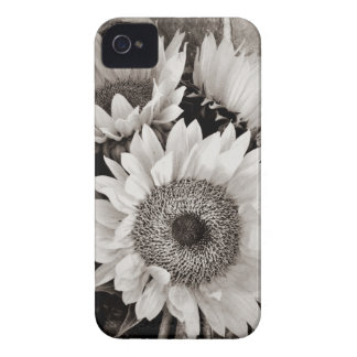 Beautiful Sunflower Bouquet Photo in Black White Case-Mate iPhone 4 Case