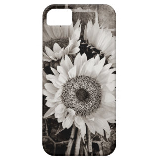 Beautiful Sunflower Bouquet Photo in Black White iPhone 5 Covers