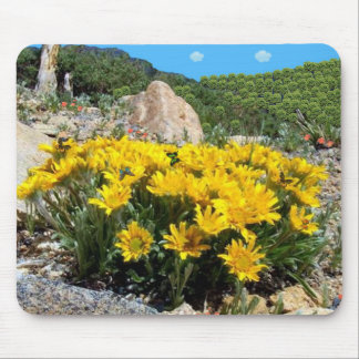 Beautiful Sunflowers In The Desert. Mouse Pad