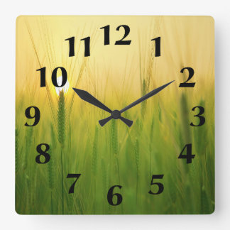 Beautiful Sunrise in Barley Field Square Wall Clock