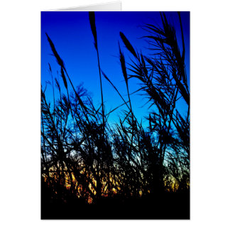 Beautiful Sunset Card