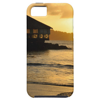 Beautiful sunset iPhone 5 covers