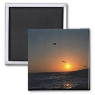 Beautiful Sunset: Todos Santos Island, Baja, Mexic Magnet