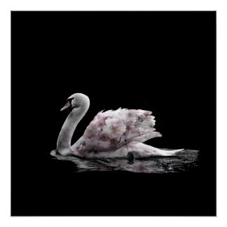 Beautiful Swan Roses Double Exposure Photo Poster