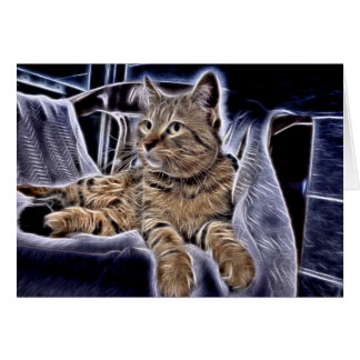 Beautiful Tabby Card