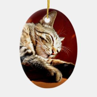 Beautiful tabby cat ceramic ornament