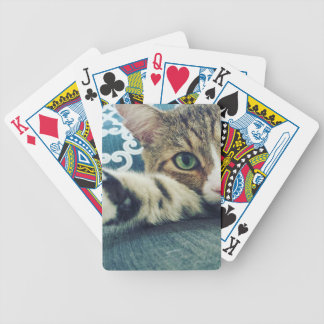 Beautiful Tabby Cat with Green Eyes Bicycle Playing Cards