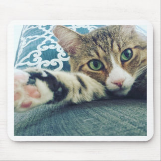Beautiful Tabby Cat with Green Eyes Mouse Pad