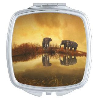 Beautiful Thailand Elephants Compact Mirror