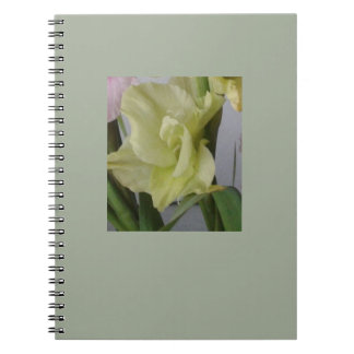Beautiful Thoughts Spiral Note Books