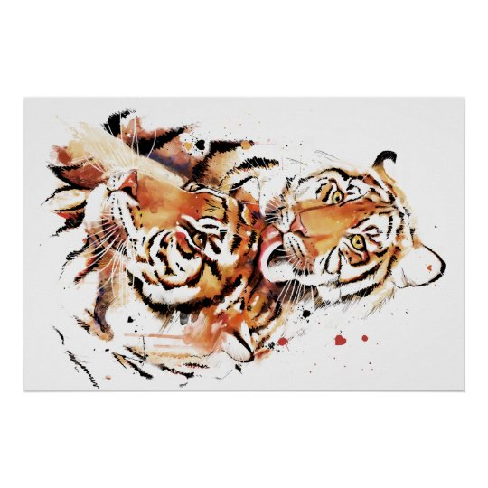 Beautiful tigers, big cats poster