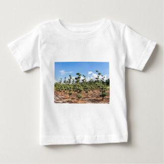 Beautiful topiary shapes in conifers baby T-Shirt