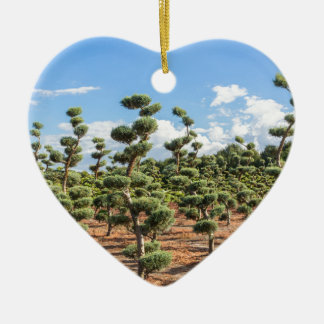 Beautiful topiary shapes in conifers ceramic heart ornament
