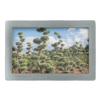 Beautiful topiary shapes in conifers rectangular belt buckles