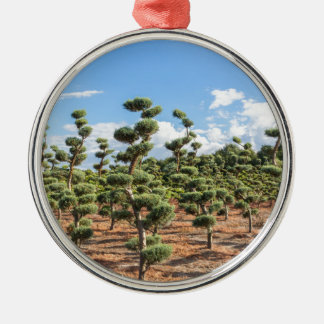 Beautiful topiary shapes in conifers Silver-Colored round ornament