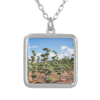 Beautiful topiary shapes in conifers silver plated necklace