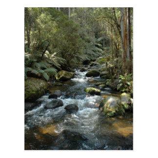 Beautiful Toroonga River In Vic At Australia Postcard